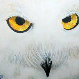 Mike Benton - Snowy Owl
