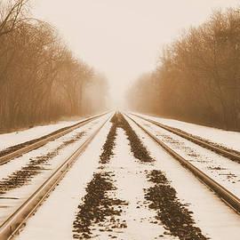 Snowy Railroad by Trish Tritz