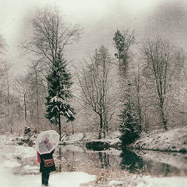 Matthias Hauser - Soft and dreamy winter landscape wetplate effect