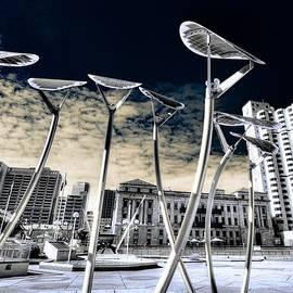 Wayne Sherriff - Solar City