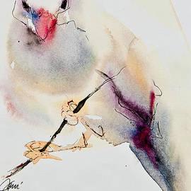 Song Bird by Jani Freimann