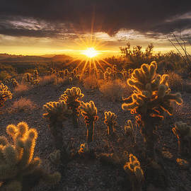 Peter Coskun - Sonoran Burn