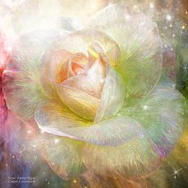 Carol Cavalaris - Soul Mate Rose