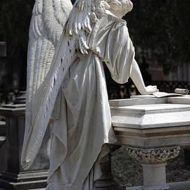 Southern Angel V by John  Nickerson