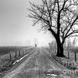 Sparks Lane BW by Douglas Stucky