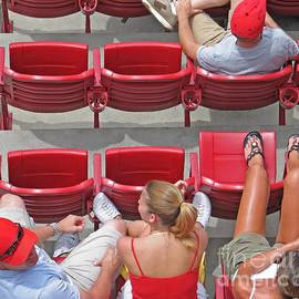 Spectators by Ann Horn