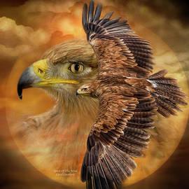 Spirit Of The Wind by Carol Cavalaris