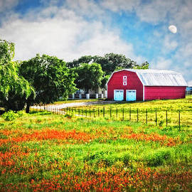 Lynn Bauer - Spring Charm in the Hill Country