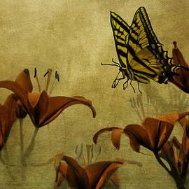 Diane Schuster - Spring Fever