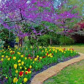 Cynthia Guinn - Spring Garden