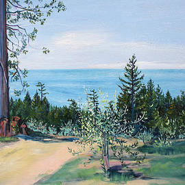 Spring Olive Grove and Pathway to the Sea by Asha Carolyn Young
