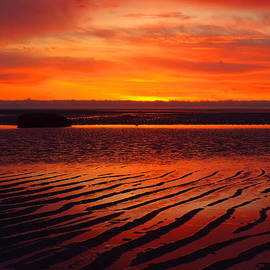 Dianne Cowen - Spring Sunrise on the Flats of Cape Cod Bay