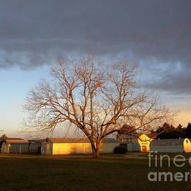 Matthew Seufer - Springtime Sunrise In South