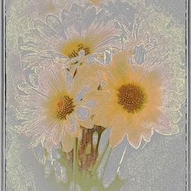 Susan  Lipschutz - Sprinkled Daisies