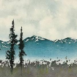 Spruce Trees in a meadow by Carolyn Doe