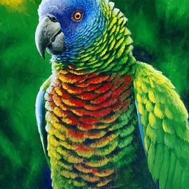 St. Lucia Parrot - Fine Colours by Christopher Cox