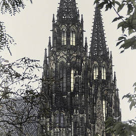Alan Toepfer - St. Vitus Cathedral - Prague