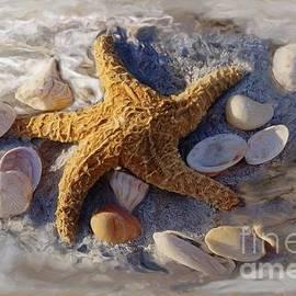 Starfish And Seashells by Richard Nickson