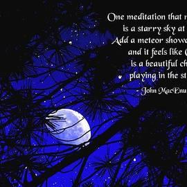 Mike Flynn - Starry Meditation