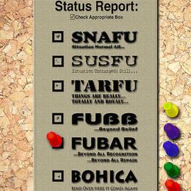 Robert J Sadler - Status Report - FUBAR