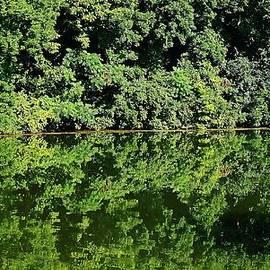 Bruce Bley - Stillness Comes On the Lake