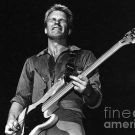 Sting 1978 by Joyce Weir