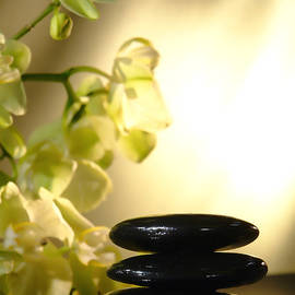 Stone Cairn and Orchids by Olivier Le Queinec