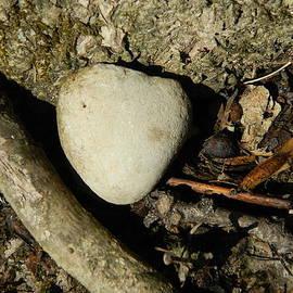 Kathy Barney - Stone Heart