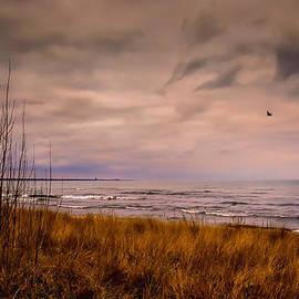 Storm Approaching At Dusk by Eduardo Tavares