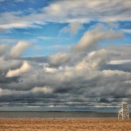 Storm Beach by Karol Livote