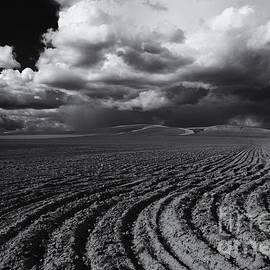 Mike  Dawson - Storm Path