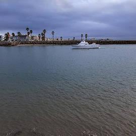 David Millenheft - Stormy Harbor