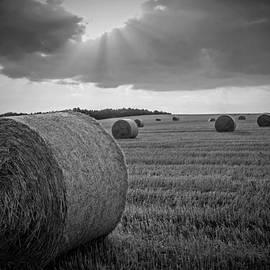 David Dehner - Straw Bales and Sunrays BW