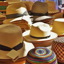 Dany Lison - Straw hats