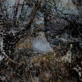 James Barnes - Stream