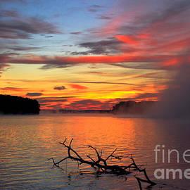 Sugar Creek Sunrise as the Fog Rolls In by Reid Callaway