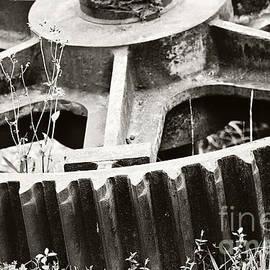 Scott Pellegrin - Sugar Mill Gear