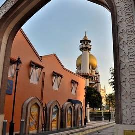 Imran Ahmed - Sultan mosque Arab Street thru arch Singapore