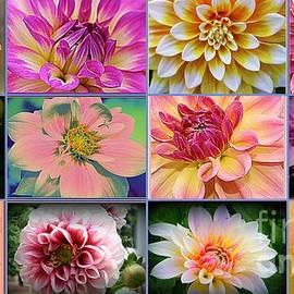 Summer Time Dahlias - A collage by Dora Sofia Caputo