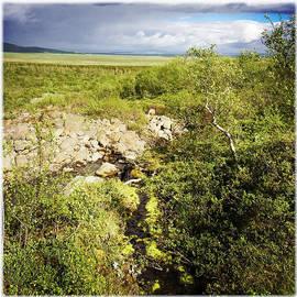 Summer landscape in Iceland