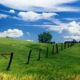 Summer Landscape by Steve Karol