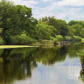 Regina Geoghan - Summer Marshland  Reflections