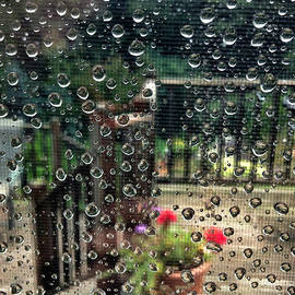 HD Connelly - summer rain