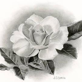 Sarah Batalka - Vintage Rose