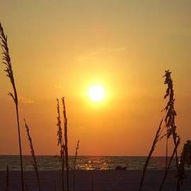 Cynthia Guinn - Sun Over The Ocean