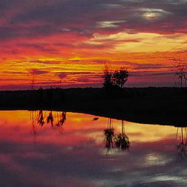 Sun Rise With Heron Shadow by John Johnson