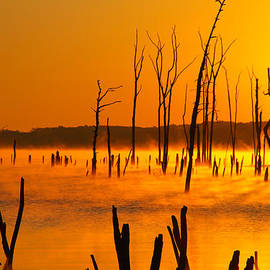Roger Becker - Sun up Manasquan Reservoir