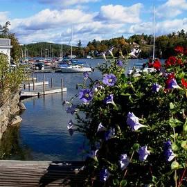 Will Boutin Photos - Sunapee Harbor 1