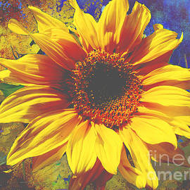 Sunflower Artwork by Beverly Guilliams