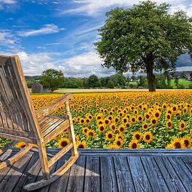 Sunflower Farm by Debra and Dave Vanderlaan